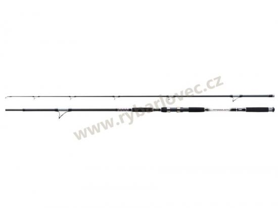 Prut Jaxon Intensa GTX Catfish Spin 2,70m 50-120 g